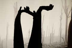 Falls the shadows (RW-V) Tags: canoneos70d canonefs35mmf28macroisstm zonnebeke westhoek belgië belgique belgium memorialmuseumpasschendaele1917 fallstheshadow helenpollock wwi 19141918 sooc 100faves 150faves 175faves 200faves 225faves 250faves 2500views 275faves 300faves 325faves