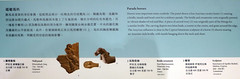 L1070712 (H Sinica) Tags: hongkonghistorymuseum britishmuseum horses sculpture nimrud cyprus