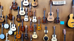 Pluck Dulcimers Not Chickens (EmperorNorton47) Tags: claremont california photo digital spring interior musicalinstruments wall guitars ukeleles
