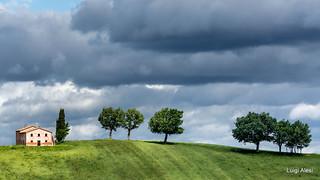 Marche countryside  - Cingli