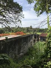 River Antoine Rum Distillery in Grenada with Simon of Hidden Treasures Hiking Tours (heatheronhertravels) Tags: grenada caribbean rume
