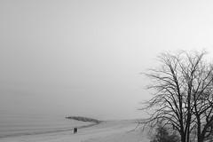 Walk on the beach ... (Testlicht) Tags: stille entspannung ruhe strand beach calm acros timmendorf x100f fuji