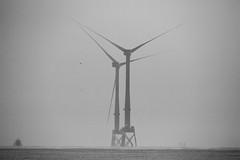 "fine art black & white long range view of two of the magnificent turbines of the Aberdeen Bay Wind Farm, near Aberdeen, Aberdeenshire, Scotland (grumpybaldprof) Tags: aberdeenshire scotland gordon nearaberdeen ""aberdeenbaywindfarm"" ""europeanoffshorewinddeploymentcentre"" eowdc offshore windfarm windturbines ""offshorewindfarm"" turbines blackdog ""bridgeofdon"" aberdeen ""aberdeencity"" ""granitecity"" grampian uk ""beautifulcity"" ""northeastscotland"" canon 7d ""canon7d"" sigma 150600mm f563 ""dgoshsmsport"" ""sigma dgoshsmsport"" newburghbeach beach longrange bw blackwhite ""blackwhite"" ""blackandwhite"" noireetblanc monochrome ""fineart"" ethereal striking artistic interpretation impressionist stylistic style contrast shadow bright dark black white illuminated"