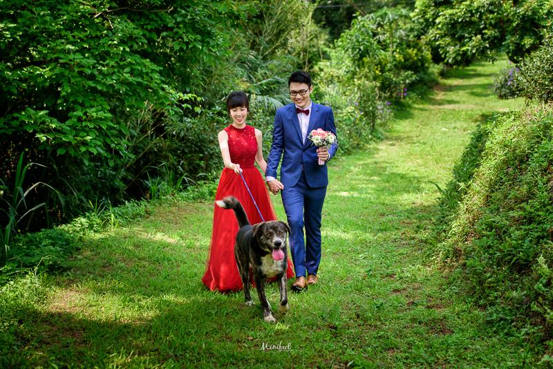 新竹婚紗,自助婚紗,婚攝小寶,第九大道婚紗,寵物婚紗,新祕BONA,DSC_6081-1
