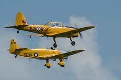 DSC_0361-2.jpg (Will Cave) Tags: trainers miles magister dh dehavilland chipmunk dhc1 formation shuttleworth display airshow flynavy planes aircraft