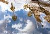 Reflejos 2 Palermo (Stauromel) Tags: palermo sicilia reflejos italia nubes clouds palmeras lluvia charco adoquines stauromel street alquimiadigital fuji fujixt2