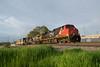 CN2534WaukeshaWI5-25-18 (railohio) Tags: cn trains waukesha wisconsin d3100 052518 c449w canadiannational