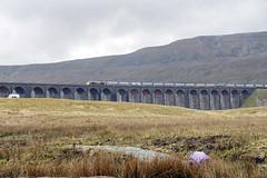 Ribblehead Viaduct (XPinger (Chris Sutton)) Tags: railways bridgesarchesandotherstructiures class66 gbrailfreight diesellocomotive diesel railfreight freighttrain topazdetail gbrf ribblehead ribbleheadviaduct sc settleandcarlislerailway