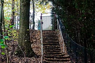 14-11-18 trepp still   dsc01422