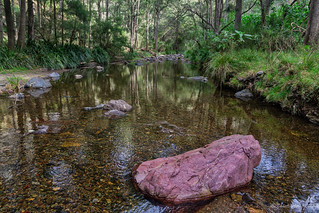 Green Gully Track: rock and reflections