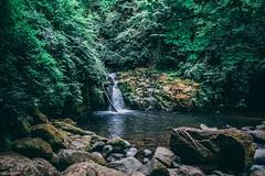 Sweet creek falls (stevoeh) Tags: waterfalls waterfall 14m green nature sweetcreekfalls oregon samyang canon80d canon