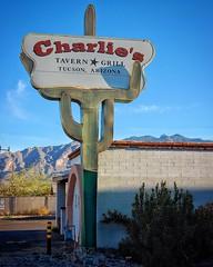 Vanishing Tucson (Chuck Pacific AKA Chuck Tofu) Tags: tucson arizona charlies tavern sign signage saguaro sunset goldenhour icon bar americana southwest vanishingtucson