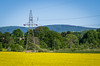 Electric canola (ErrorByPixel) Tags: hills hill power lines electric trees poland silesia lower bogatynia sky landscape field pylon canola rapeseed blue green yellow pentax