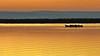 Albufera dorada - golden lake (gerard eder) Tags: world travel reise viajes europa europe españa spain spanien valencia landscape landschaft lake lago lagodelaalbufera lamarjal albufera albuferalake sunset sonnenuntergang puestadesol atardecer goldenhour golden boats boote barcas outdoor paisajes panorama