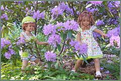 Sanrike und Tivi ... im Rhododendrondschungel ... (Kindergartenkinder 2018) Tags: gruga grugapark essen kindergartenkinder tivi sanrike rhododendron annette himstedt garten