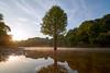. (428sr) Tags: nikon landscape 風景 d850 carlzeiss zf2 distagont2815 nature