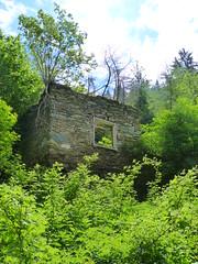 20180525Steiermark Fohnsdorf Dietersdorfer Graben1v5 Ruine (rerednaw_at) Tags: steiermark fohnsdorf dietersdorfergraben bauwerk ruine verfall