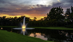 Backyard Sunset (Charles Patrick Ewing) Tags: landscape sun sunset night nightfall dark darrkness water lake reflection reflections tres sky grass flowers red green yellow purple orange colorful colourful colors rainbow art artistic fave faves new best beautiful everything all photo photos photography fountain lowlight florida naples collier shadows landscapes nature natural outdoor skies skyscape