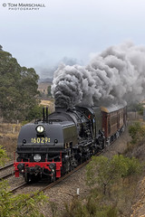 Rounding Sheild's Hill (Tom Marschall) Tags: rail railroad railway travel heritage australia sydney nsw new south wales canon photography steam train loco locomotive engine cloud cloudy smoke