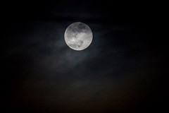 Watching the moon again (lookingxforxaxsoul) Tags: moon astrophotography space night gloomy moody dark nocturnal polishphotographer photography polishphotography poland