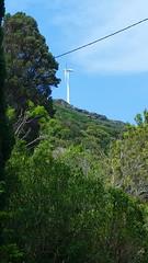 303 - Cap Corse, Rogliano, les éoliennes sur la crête (paspog) Tags: rogliano corse capcorse france mai may 2018 éoliennes windmills