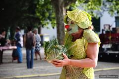 Festival Envie Rhônement au Sambuc à la Tour du Valat (Missfujii) Tags:
