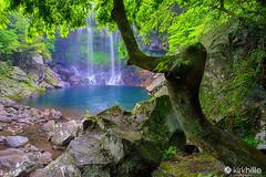 Cheonjeyeon Waterfall - South Korea - Jeju Island (kirkhillephotography) Tags: jeju south korea landscape landscapephotography waterscape water highresolution wallpaper photography photo nature travel travelphotography asia trees