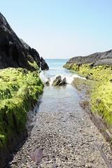It ain't a water slide # ouch (S Collins 2011) Tags: sea rock sky grass water bay coast beach landscape ocean ireland kerry