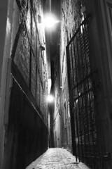 Rue du Carré (Liège 2018) (LiveFromLiege) Tags: liège luik wallonie belgique architecture liege lüttich liegi lieja belgium europe city visitezliège visitliege urban belgien belgie belgio リエージュ льеж bynight nocturne nightphotography