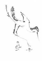 Avocet - Kluut [20180402]-1 (rodneyvdb) Tags: animal art avocet bird blackandwhite bw contemporary drawing expression expressionism green illustration ink kluut oiseau painting