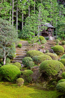 Tofukuji Temple Garden