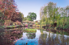 201804200681 (Leow Sama) Tags: claude monet deau watergarden giverny flowers jardin fleur arbre reflection