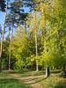 289_8961_r1 (shalivla) Tags: осень екатеринбург