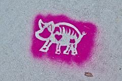 Sol Mission, San Francisco, CA (Robby Virus) Tags: sanfrancisco california sf ca bayarea sol mission sidewalk cement concrete pavement stencil animal art street pig skeleton