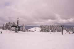 Timberline Ski Slopes (www78) Tags: governmentcamp mounthood nationalforest oregon timberline mount hood government camp ski slopes