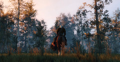 (U K I Y O) Tags: witcher 3 wild hunt screenarchery screenshots screenshot game gaming graphics bokeh photography ingame gameplay horse riding light mood tones