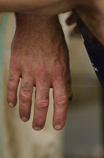 La main du tondeur