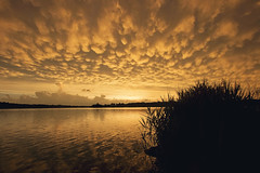 Now, that's what I call a sunset... (Tiara Rae Photography) Tags: sunset mammatus storm thunderstorms clouds storms reflection sky grasses marsh lake water omaha nebraska landscape nature weather meteorology zorinksy