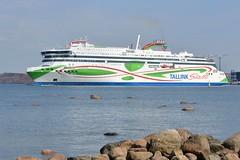 MEGASTAR   (EE) (Eerosuomela4) Tags: megastar tallin helsinki finland summerday pihlajasaari estonia ee passenger route