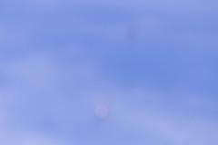 IMG_7389.jpg (wogggieee) Tags: mitchell lightning t6 fly mustang takeoff historical corsair p40 texan fagenfighters p51 p38 northamerican aviationgeek minnesota grumman worldwarii kgdb warbirds gdb mn airshow warhawk planespotting lockheed avgeeks avgeek b25 plane airport hellcat rayfagen f4f history f4u planeplanes granitefalls planes aviation