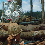 24 Nov 1967, Dak To, South Vietnam - Christmas '67 on Hill 875 thumbnail