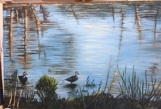 Ducks in Mildura - my oil painting