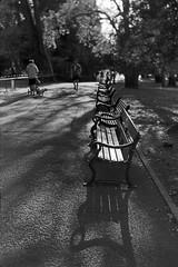 Walk in Belfast 17052018015 (irishlad031_vintage) Tags: 120mm 120mmfilm irishlad031vintage irishlad031 irish ireland vintagephotography film cityscape beirax belfast botanicgardens malone coantrim ulster blackwhite boxbrownie browniecamera
