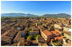Cartolina da Lucca (forastico) Tags: forastico d7100 lucca toscana tetti cartolina