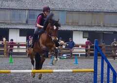 """My """"Not so little Abbey"""" winning her first jumping competition on her pony """"Billy"""" (favmark1) Tags: abbey daughter jump competition jumpcompetition win kent pony billy"""