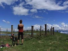 Nasco et moi... (bulbocode909) Tags: valais suisse mex chiens gens montagnes nature printemps nuages étangs poteaux paysages vert bleu groupenuagesetciel