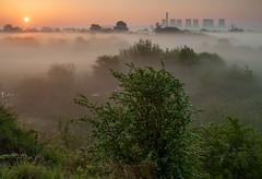 A New Dawn At Hemington (Julian Barker) Tags: hemington leicestershire sunrise dawn golden light ratcliffe on soar power station near nottingham mist fog morning julian barker england great britain uk europe vegetation