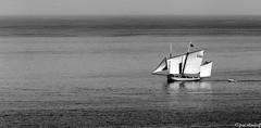 IMG_2327 (fred ettendorff) Tags: bateaux granville maritimes mer normandie sortiemer france