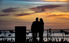 Rondezvous (Christie : Colour & Light Collection) Tags: sunset sundown vancouver bc canada ocean northamerica nikon romance romancing couple inlove love rondezvous lovers pacificnorthwest nikkor people man woman dusk outdoors sky clouds light nightlight silhouette fence fencefriday harbour ship englishbay