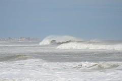 DSC_9723 (padraicsmeehan) Tags: beach sunandsurf sand birds coast longisland atlanticbeach ny newyork unitedstates usa america beachclub shorebirds coastal southshore waves crashing ocean atlanticocean